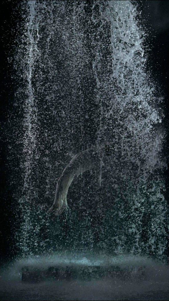 La Ascensión de Tristán (2005)