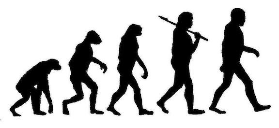 Evolución humana copia
